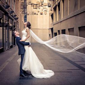 reaching High by Adam Beniston - Wedding Bride & Groom