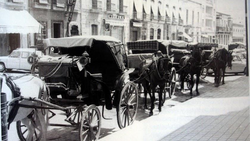 Coches de caballos estacionados en la Rambla Obispo Orberá.