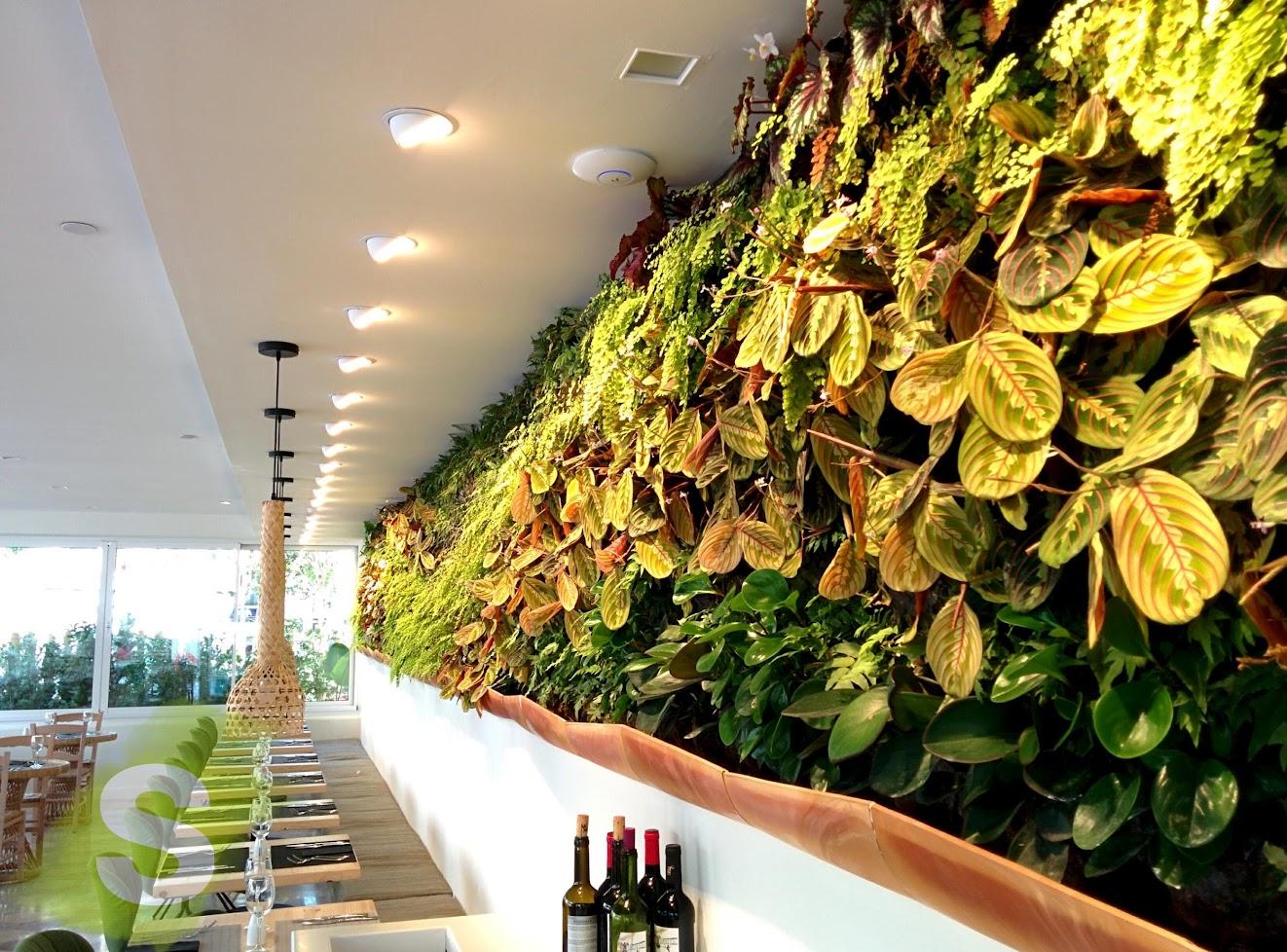 Jardines Verticales con planta de interior en Mallorca
