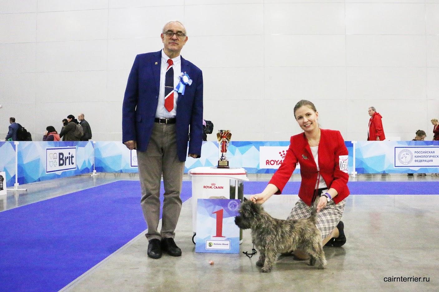 Фото керн терьера Пунш питомника Еливс с хендлером и экспертом на призовом месте выставки