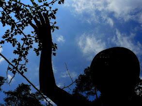 Photo: Sky