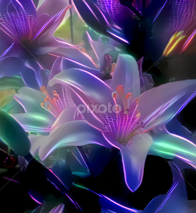 by Cassy 67 - Digital Art Abstract