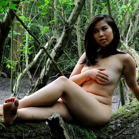 Reclining Modesty by DJ Cockburn - Nudes & Boudoir Artistic Nude ( forest, woman, woodland, log, natural light, asian, concealed nude, implied nude, cece, portrait, outdoor, chinese, model, sitting )