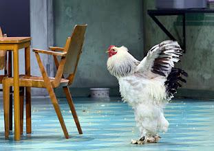 Photo: WIEN/ BURGTHEATER: DER REVISOR von Nikolaj Gogol. Premiere am 4.9.2015. Inszenierung: Alvis Hermanis. Copyright: Barbara Zeininger