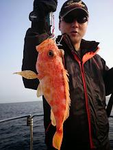 Photo: 「いいえ!キビナで根魚釣りです!」 ・・・まっ、いいか。楽しければ。