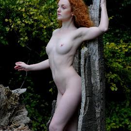 by DJ Cockburn - Nudes & Boudoir Artistic Nude ( natural light, nude, nature, woman )