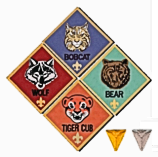 Cub Scout Badges.png