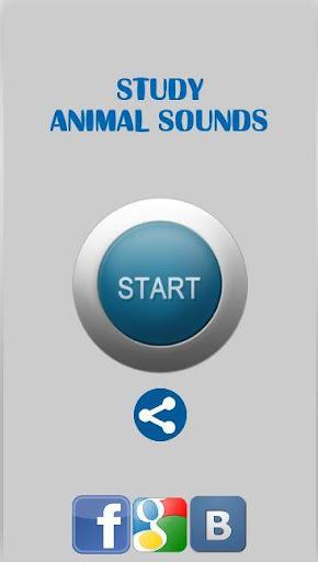 研究動物サウンド