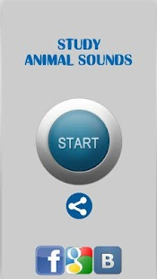 Study Animal Sounds - náhled