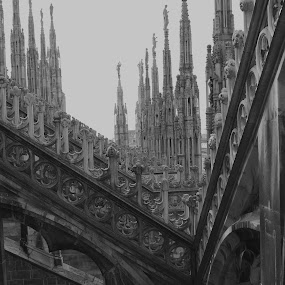 by Marco Virgone - Buildings & Architecture Statues & Monuments