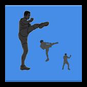 Kick Fighter Workout