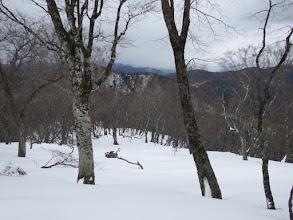 小栗山から下山開始