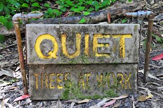 Photo: Quiet.