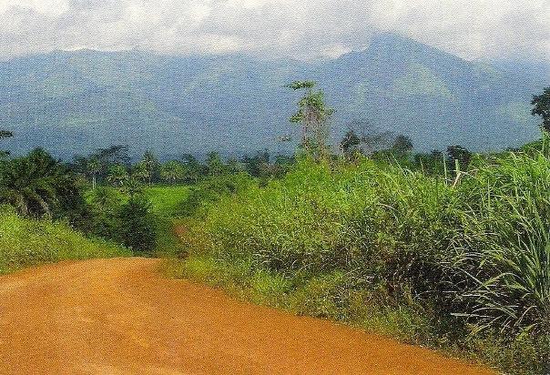 Reserva Natural do Monte Nimba