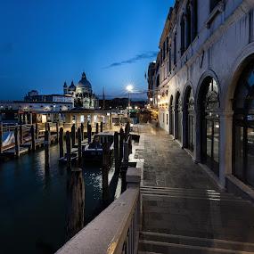 Venice by Thomas Berwein - City,  Street & Park  Night