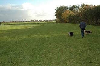 Photo: Svend går på marken foran huset med Baloo og Bianca, hvilket de nyder meget.