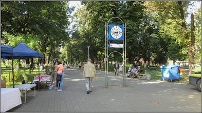 Photo: Turda - Parcul Central, Zmt - 2019.08.17
