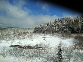 Photo: Bannerman Creek is still frozen