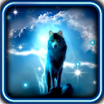 Wolves Night live wallpaper apk
