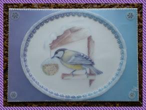 """Photo: """" les oiseaux de l'hiver """" envoyée à Eulita ."""