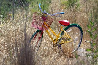 Photo: Google Bike