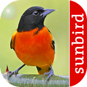 App Icon for Bird Id North America App in Czech Republic Google Play Store
