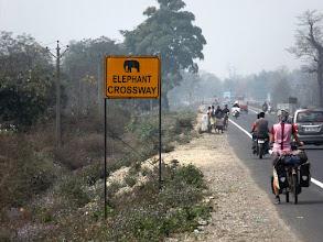 Photo: Die letzten Kilometer in Indien auf dem Weg Richtung Nepal