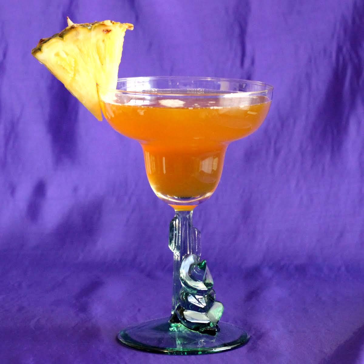 10 Best Cactus Juice Alcoholic Drink Recipes