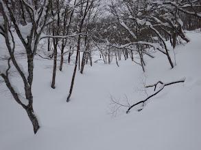 雪は深いが楽しく歩け