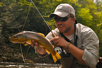 Photo: A Wild Savage River Brown Trout