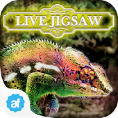 Live Jigsaw Escape to Paradise