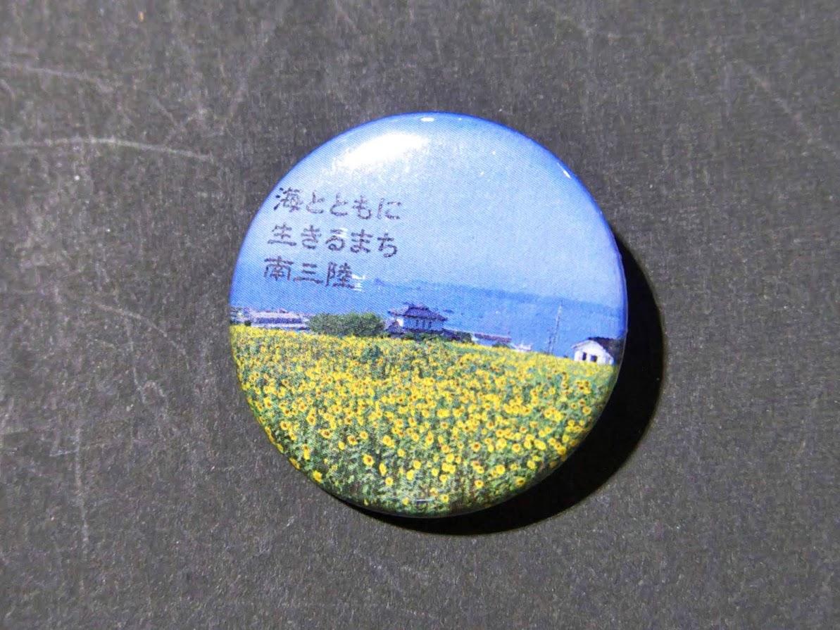 泊浜のひまわり畑