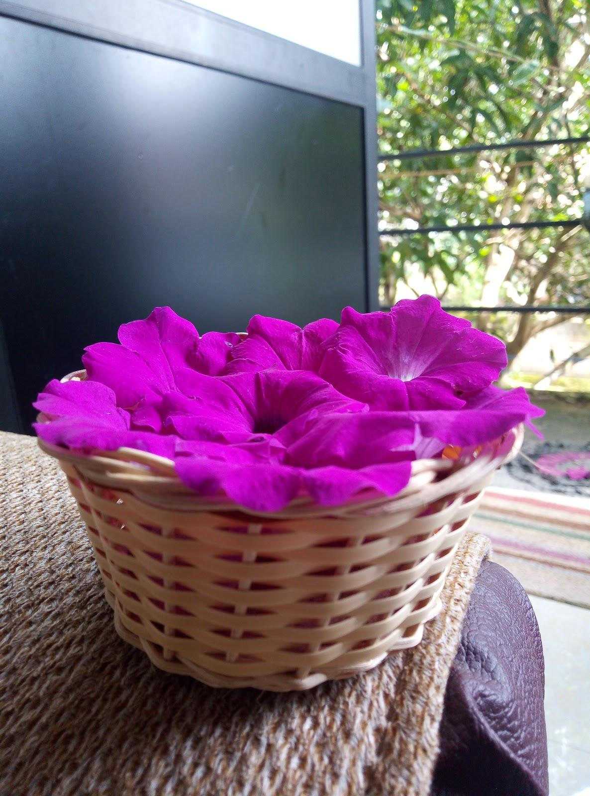 Handmade Small Brown Woven Wicker Cane Bamboo Basket Flowers Fruits Sri Lanka