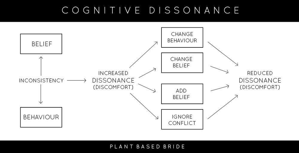 Image result for cognitive dissonance