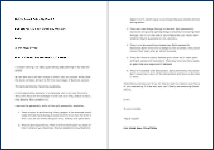 Rapid Results Marketing Formula - OptIn Email 5