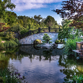 The Garden by Matthew Clausen - Landscapes Forests ( water, sky, nature, trees, flowers, landscape, garden )