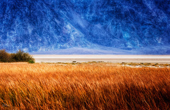 Photo: DEATH VALLEY SAVANNAH  Here's one from my trip to Death Valley last fall. By the name I assumed it would be uninhabitable desert, but there was tons of wildlife and vegetation everywhere. #DV2011