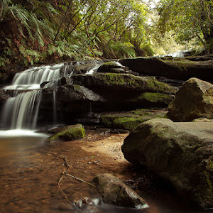 U:\My Pictures\Leura Cascades.jpg
