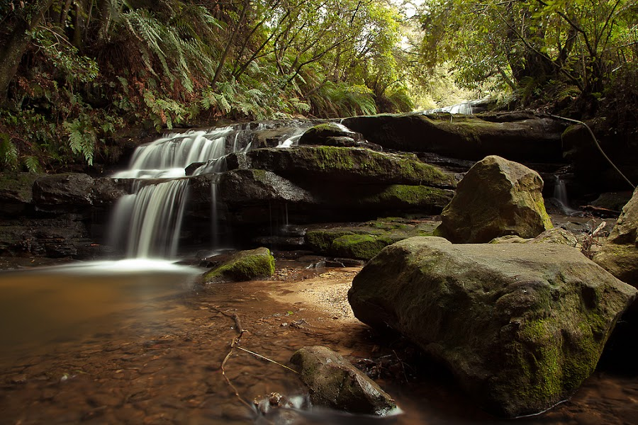 Leura Cascades by James Pearson - Landscapes Forests ( water, mountains, nature, waterfall, australia, landscape, river )