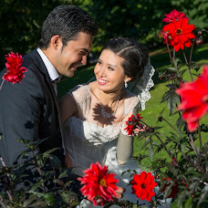 Wedding photographer Mikhail Gold (MishaGold). Photo of 06.02.2014