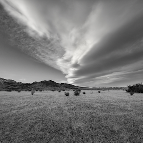 Waiting  by Michael Keel - Black & White Landscapes ( mountains, grass, mono lake, snow, lenticular clouds, sierra )