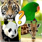 Animal Quiz - Wild Kingdom