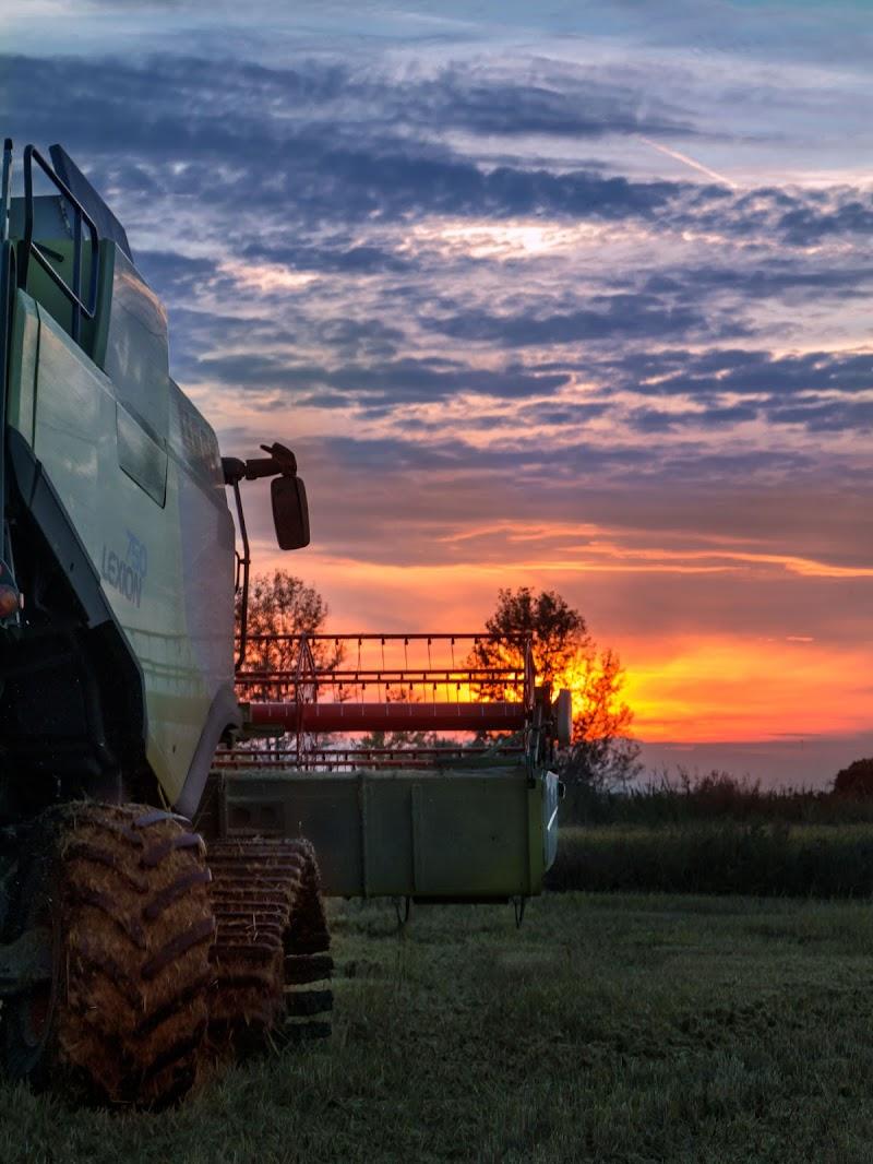 Lavoro al tramonto  di Lultimo