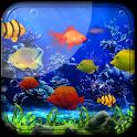 Fishes Live Wallpaper 2019 - Aquarium Koi Bgs icon