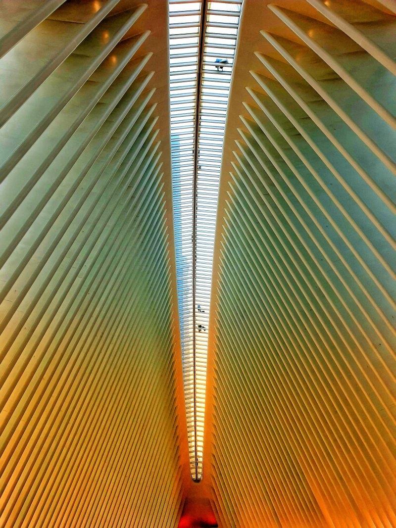 Oculus NYC di 70Malefica