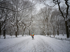 Photo: The Central Park Mall in winter. New York City.  View the writing that accompanies this post here at this link on Google Plus:  https://plus.google.com/108527329601014444443/posts/GJyACR2WM1i  View more New York City photography by Vivienne Gucwa here:  http://nythroughthelens.com