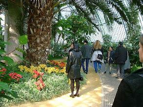 Photo: Royal green house