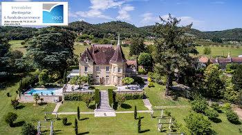 château à Calviac-en-Périgord (24)