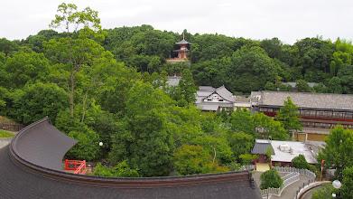 Photo: 多宝塔 三宝荒神堂から撮影