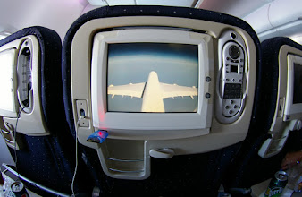 Photo: Vue caméra View Bird